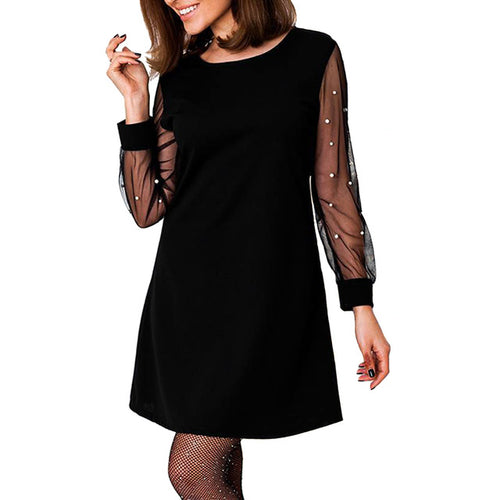 Pretty Long Sleeve Mesh Dress