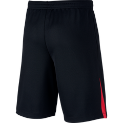 Nike Neymar Dri fit youth shorts