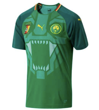 b4aba5597078 Cameroon Home Jersey 2018 - Adult – Juggles Football Culture