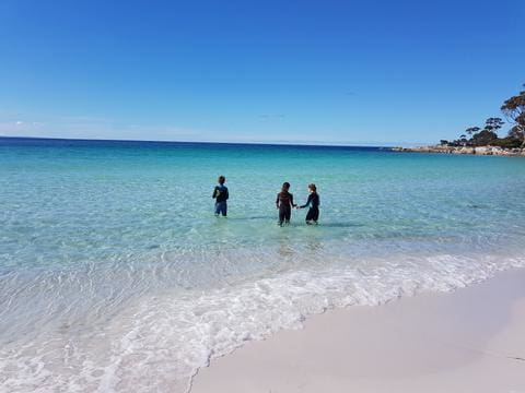 three swimmers in wetsuits in the ocean