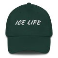 Ice Life Dad Hat