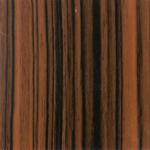 Red Ebony HG Panel Door | Wood Grains High Gloss