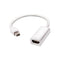 White Thunderbolt Mini DisplayPort DP to HDMI | High Speed Cable Adapter 1080/4K