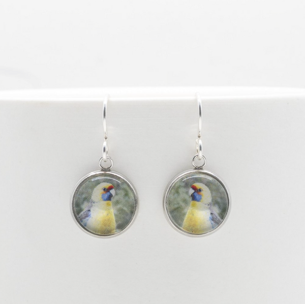 Sustainable Recycled Silver Earrings with Bird Photography
