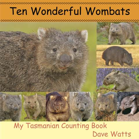 10 Wonderful Wombats
