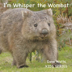 I'm Whisper the Wombat