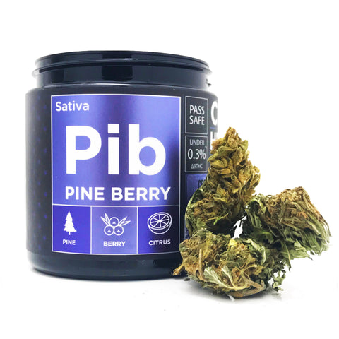OG CBD Hemp Flower - Pine Berry