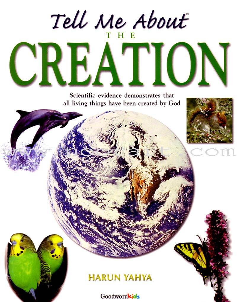 Tell Me About Creation (Paperback)