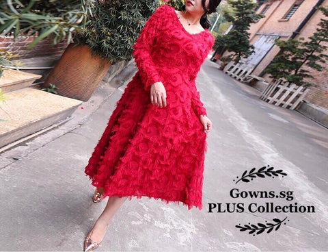 Fringed Plus Dress (L Onwards) - Gowns.sg