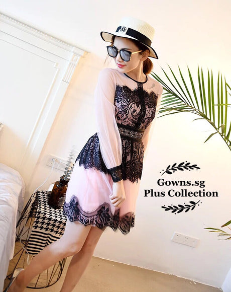 Eyelash Lace Plus Dress (L Onwards) - Gowns.sg