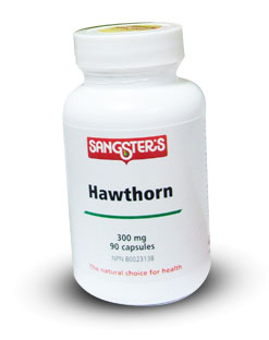 Sangster's Hawthorn