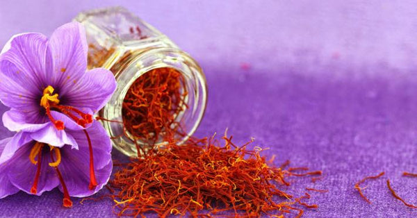 Crocus Sativus and Saffron: Uses and Benefits
