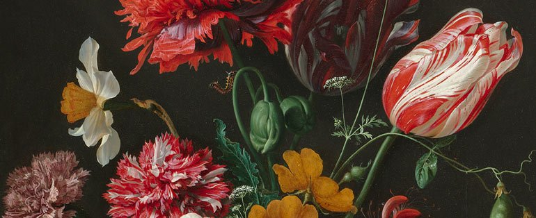 Dutch Masters: Painting Beautiful Flower Bulbs