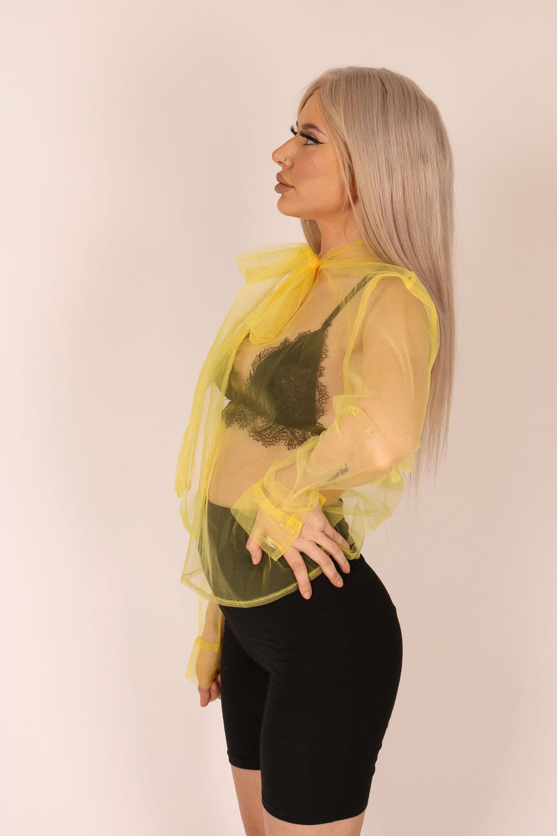 The Thing You Didn't Know You Wanted 'Oversized Pussybow Blouse In Sheer Organza'