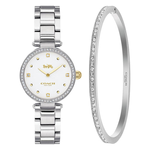 Coach Park Stainless Steel Ladies Watch - 14000062