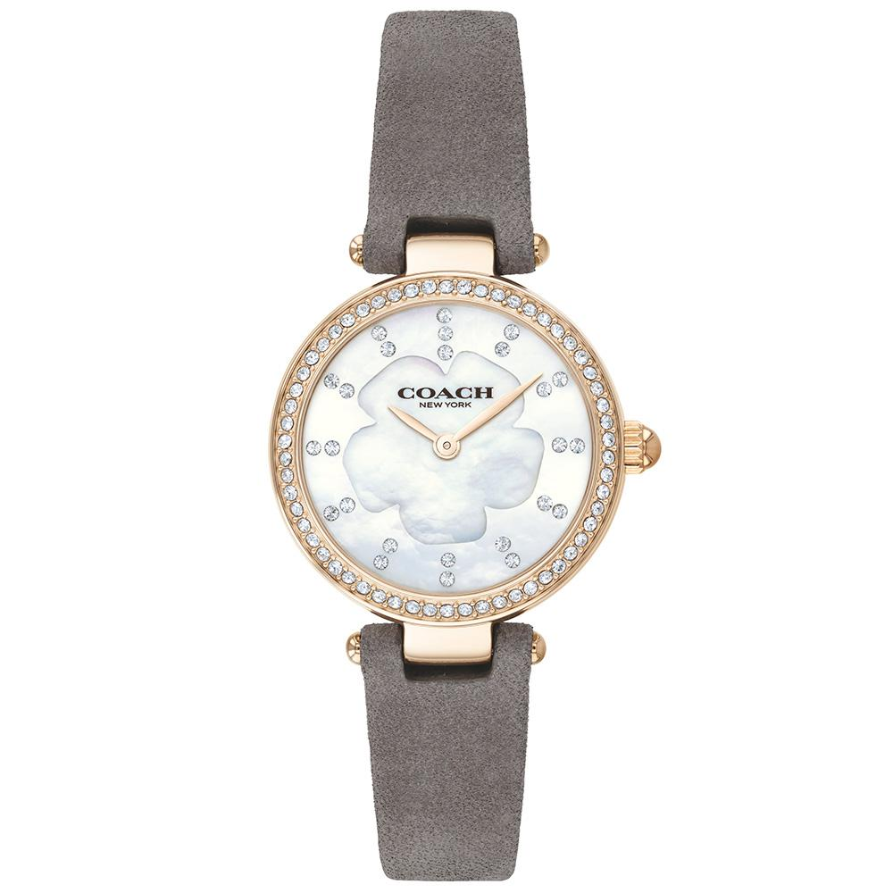 Coach Park Gold Stainless Steel Women's Watch - 14503104