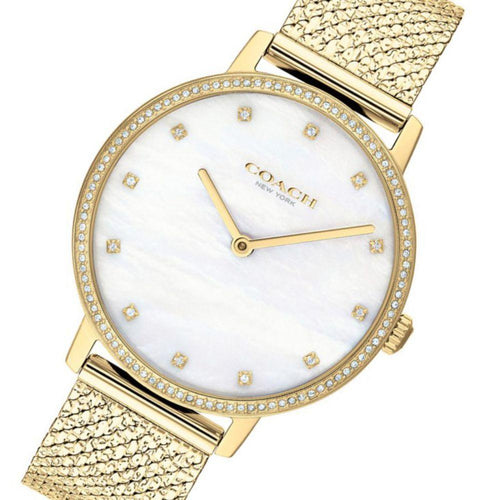 Coach Audrey Gold Mesh Ladies Slim Watch - 14503359