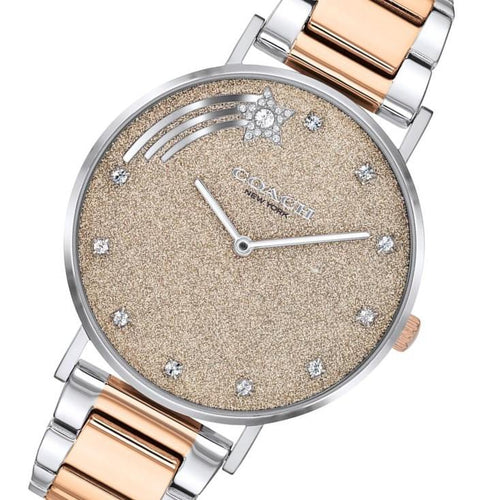 Coach Perry Two-Tone Stainless Steel Ladies Watch - 14503522