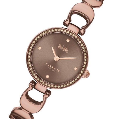 Coach Park Brown Steel  Bracelet Ladies Watch - 14503563