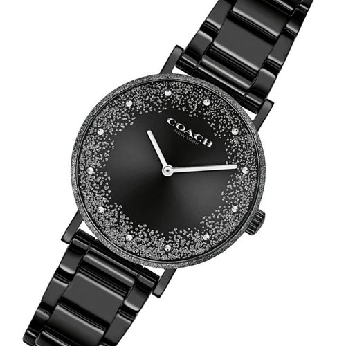 Coach Perry Black Steel Women's Watch - 14503641