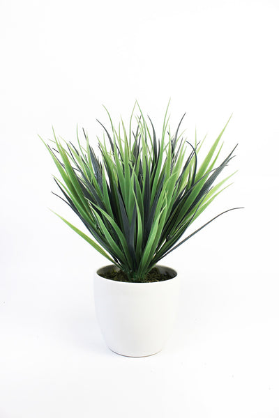 Decorative Indoor Grasses in White Ceramic Pot (Green)
