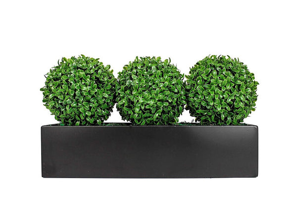 Boxwood Triple Balls