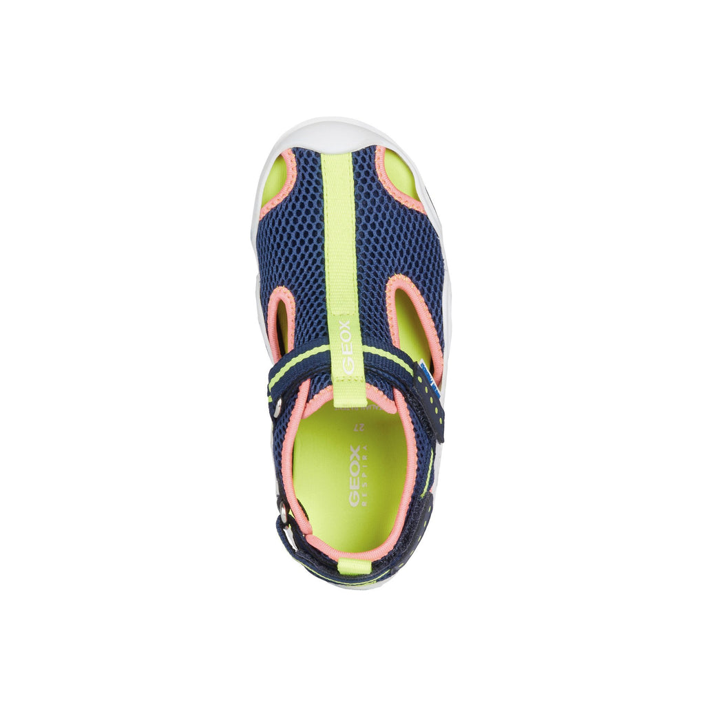Top of GEOX J Wader Navy & Fluorescent Pink Neoprene Water Sandals. Cooshoo kids shoes.