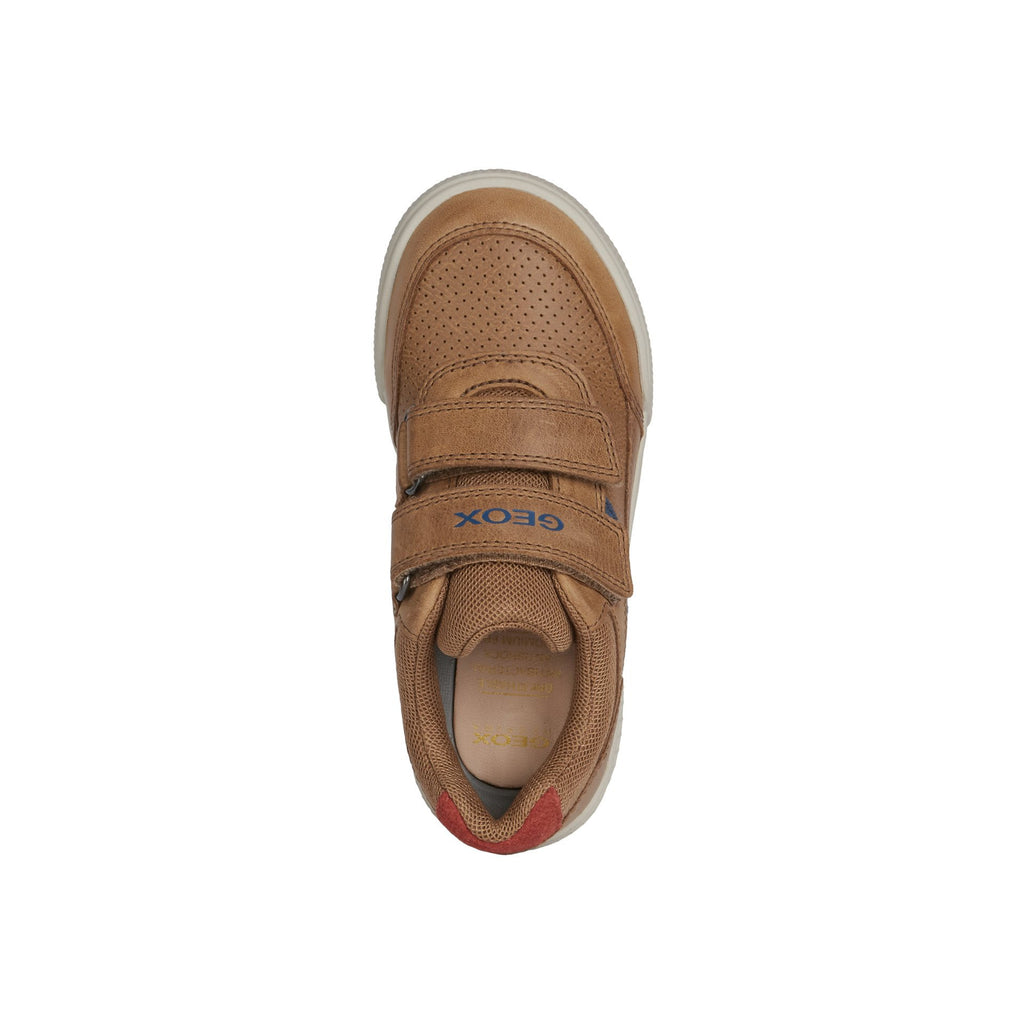 Top view of Profile of GEOX J Poseido Cognac Tan Trainer Shoes. Cooshoo kids shoes.