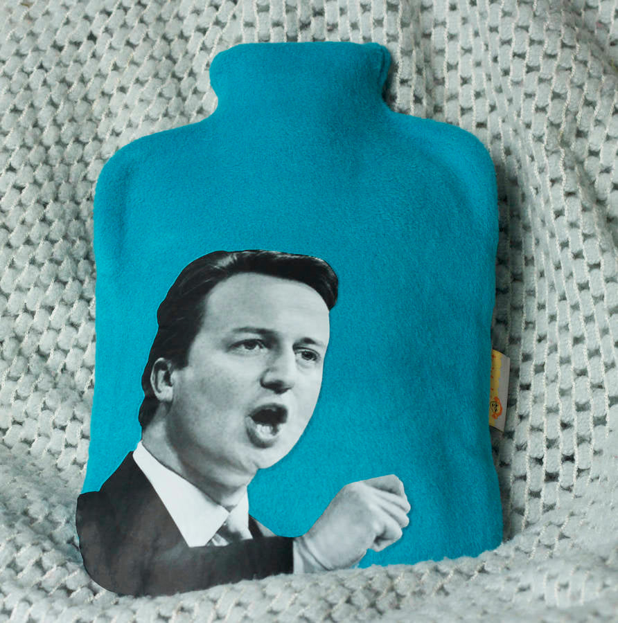 Political Hottie  - Cameron hot water bottle