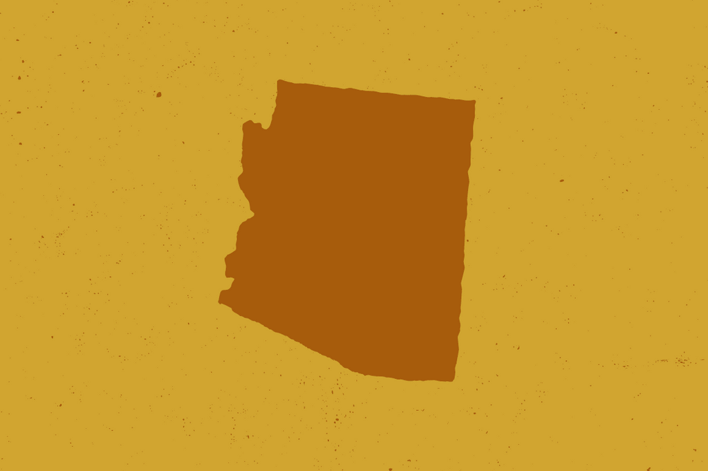 US State Vectors by Hand, Arizona