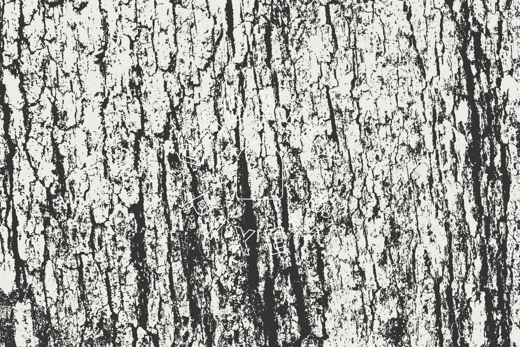 Tree Bark Vector Textures