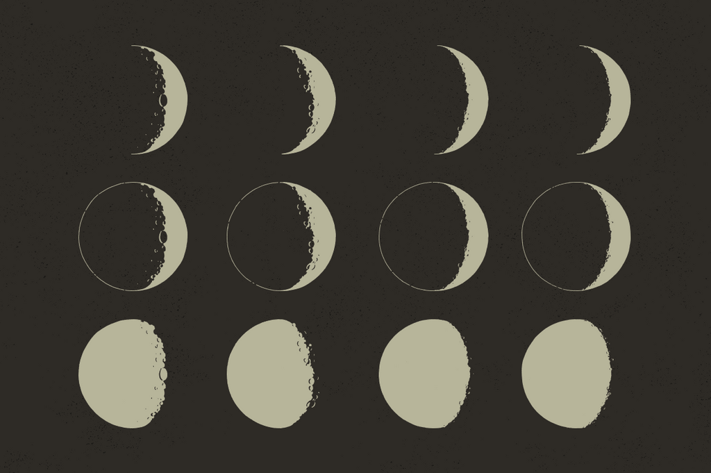 Lunar moon phases vectors