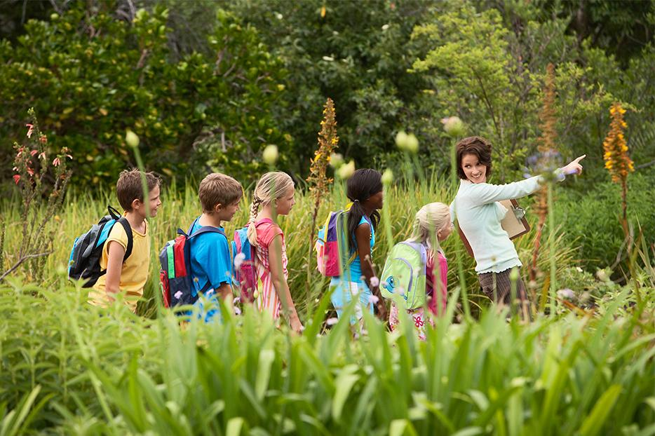 Eco friendly activities and camps for the kids this summer