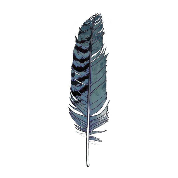 Tattly - Eagle Feather Pairs