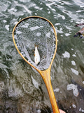 Kingfisher Mid-Length Fishing Landing Net #1944