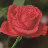 Diamond Painting Kit Rose Bud Diamond Dotz kit0393