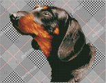 Diamond Painting Kit Noble Dachsie Diamond Dotz kit0385