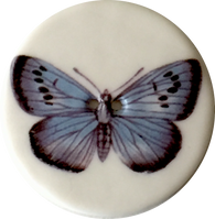 Blue Butterfly Porcelain Button 1-1/8""