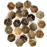 "Brown 1/2"" Shell Button, Flower Shape Chocolate, NINE for $10.00.  #23-125"