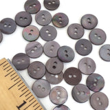 "Warm Gray 3/8"" Tiny Shell, 16 buttons for $4.75"