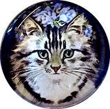 Long Haired Tabby Cat Domed Crystal Button 1""