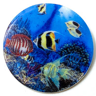 Under the Sea Button by Susan Clarke, 1-1/2""