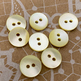 "1/2"" Ivory Shell 2-hole Button, 6 for $5.10   #23-160"