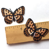 Little Monarch Butterfly Patch/Applique Iron-On 1-1/2""