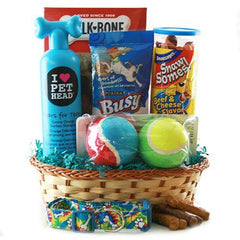 Monthly Dog Treat & Toy Box