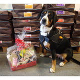 Doggy Birthday/Gift Hampers