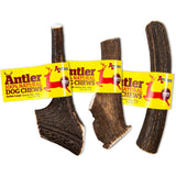Antos Antler - Dog Chew