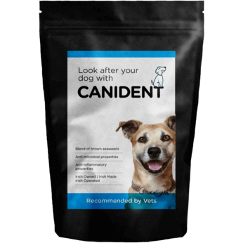 Canident Natural Supplement!