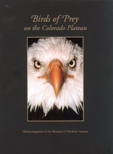 Plateau: Birds of Prey