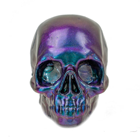 Glass Skull by Robin Lehman